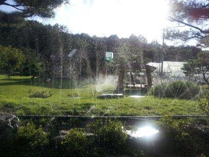 여름의 시원한 분수